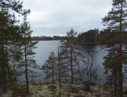Savonlinna Pöllänniemi